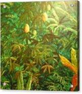 Mango Hill Acrylic Print