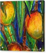 Mango Tree Acrylic Print by Julie Kerns Schaper - Printscapes