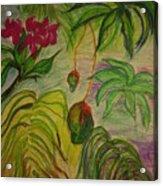 Mangoes Acrylic Print by Lee Krbavac