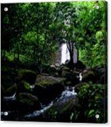 Manoa Falls Stream Acrylic Print