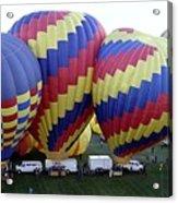 Many Balloons Acrylic Print