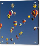 Many Vividly Colored Hot Air Balloons Acrylic Print by Ralph Lee Hopkins