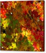 Maple Abstract Acrylic Print