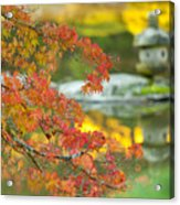Maple Colors Acrylic Print