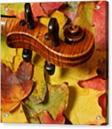 Maple Violin Scroll On Fall Maple Leaves Acrylic Print