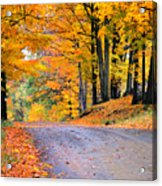 Maples Of Rupert Vermont Acrylic Print by Thomas Schoeller
