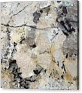 Marble Tan Black Acrylic Print