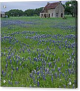 Marble Falls Texas Stone House And Bluebonnets Acrylic Print