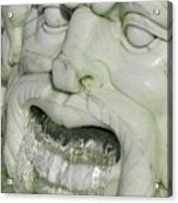 Marble Head Acrylic Print