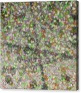 Marble Slab 6-23-2015 - 1 Acrylic Print
