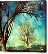 March 5 2010 Acrylic Print