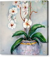 March Orchids Acrylic Print