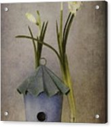 March Acrylic Print by Priska Wettstein