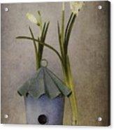 March Acrylic Print by Priska Wettstein