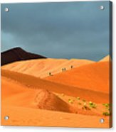Marching On Sossusvlei Dunes Acrylic Print
