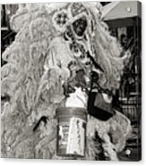 Mardi Gras Indian In Pirates Alley In Black And White Acrylic Print