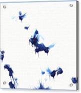 Marias Song Acrylic Print