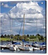 Marina - Branched Oak Lake Acrylic Print