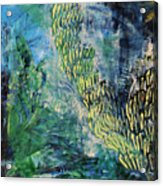MarineLife Acrylic Print