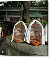 Market Vendor Selling Caged Birds Acrylic Print by Sami Sarkis