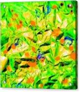 Orange Green Acrylic Print