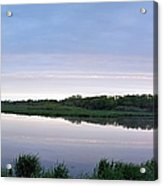 Marsh Calm Acrylic Print
