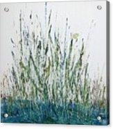 Marsh Life II Acrylic Print
