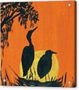 Marsh Nest Acrylic Print