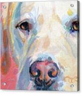 Martha's Pink Nose Acrylic Print