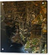 Marwick Head Orkney Scotland Acrylic Print