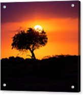 Masai Mara Sunrise Acrylic Print