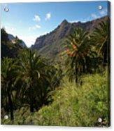 Masca Valley And Parque Rural De Teno 2 Acrylic Print