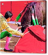 Matador On Knees Acrylic Print