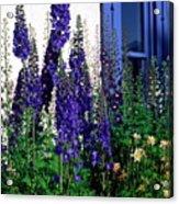Matching Flowers And  Window Acrylic Print