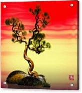 Math Pine 1 Acrylic Print by GuoJun Pan