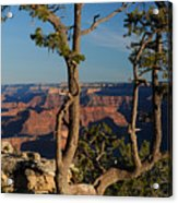 Mather Point South Rim Grand Canyon Acrylic Print
