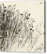 Matsuo Basho Remembering Acrylic Print