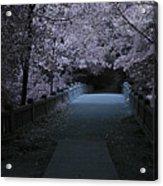Matthiessen State Park Bridge False Color Infrared No 2 Acrylic Print