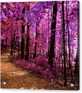 Matthiessen State Park Trail False Color Infrared No 2 Acrylic Print