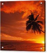 Maui, A Beautiful Sunset Acrylic Print