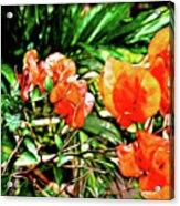 Maui Floral Acrylic Print