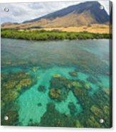 Maui Landscape Acrylic Print