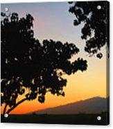 Maui Road Sunset Acrylic Print