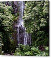 Maui Waterfall Acrylic Print