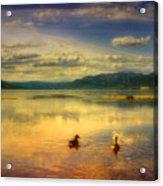May 12 2010 Acrylic Print