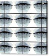 Mayfly Wings Design Atalophlebia Albiterminata  Acrylic Print