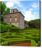 Mazed Garden Acrylic Print