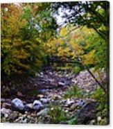 Mcarthur Bridge Over The Roaring Branch Acrylic Print