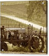 Mccormick Deering Tractor In Sepia Acrylic Print