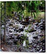 Mcdonald Lake Stream Acrylic Print
